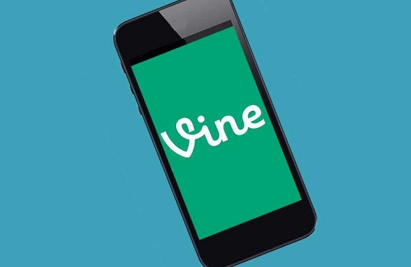 facts stats about vine