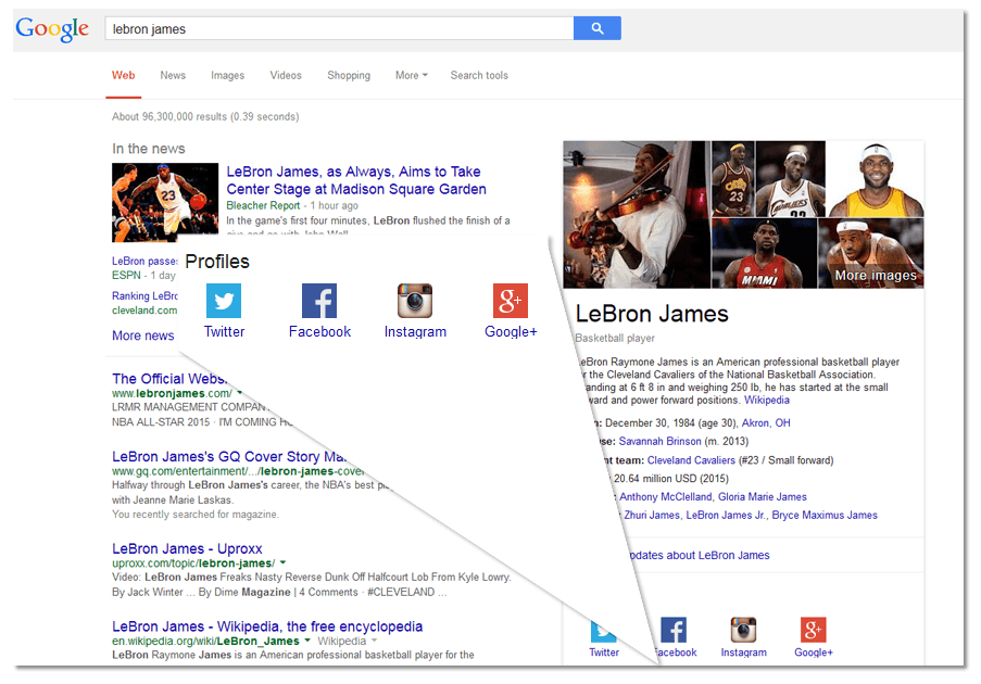 people knowledge graph social profile